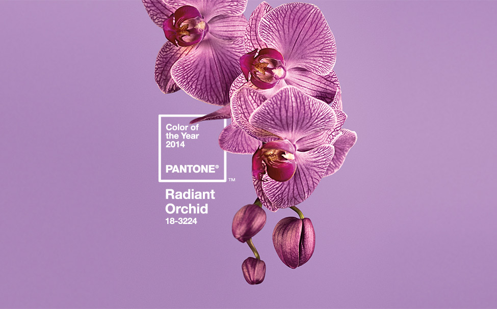 PANTONE 18-3224 Radiant Orchid