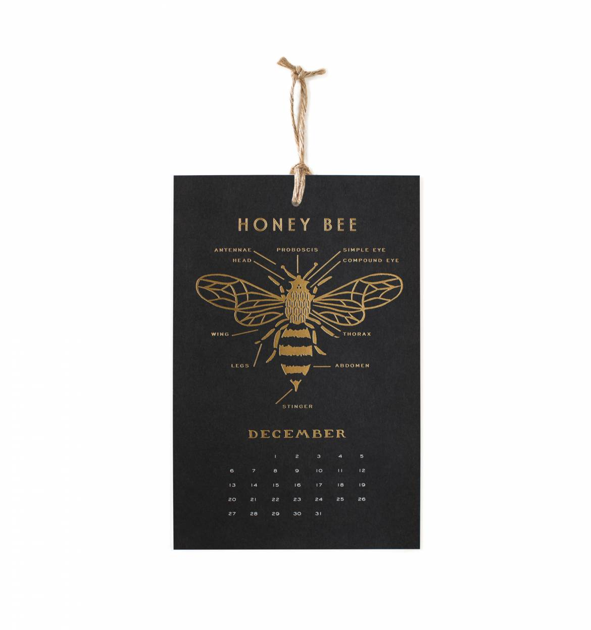 2015 Calendar - Honey Bee Wall